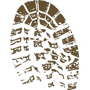 Collaborative Testing Services Inc Cts Forensics Testing Program